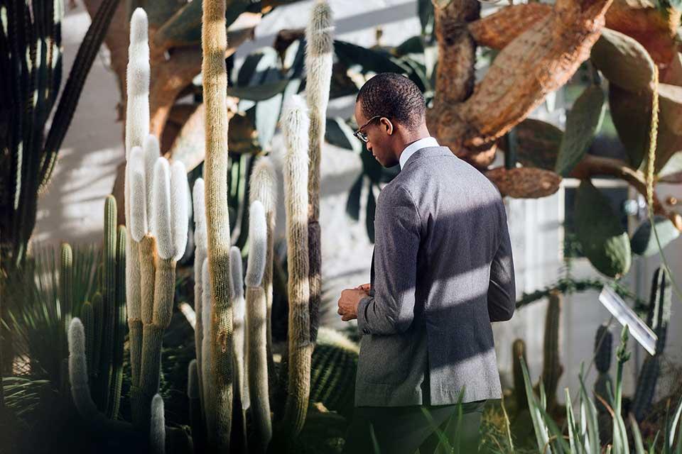 lentiz - horticulture
